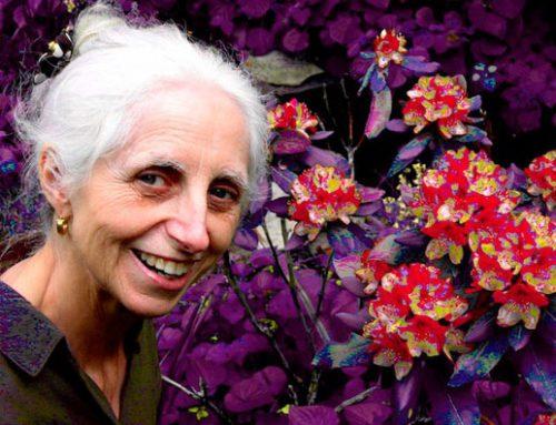 Barbara Godard – 1942-2010